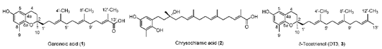 Molecule illustrations of Garcinoic acid and DT3 from Stheesh and Xingui's published paper.